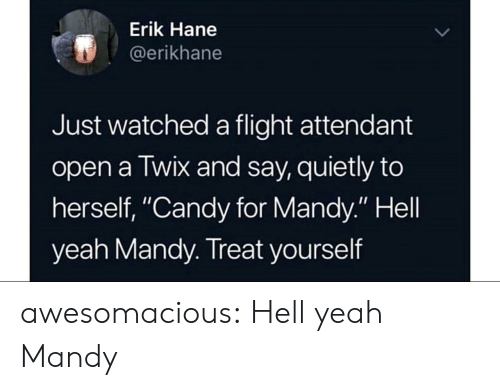 """Treat Yourself: Erik Hane  @erikhane  Just watched a flight attendant  open a Twix and say, quietly to  herself, """"Candy for Mandy."""" Hell  yeah Mandy. Treat yourself awesomacious:  Hell yeah Mandy"""