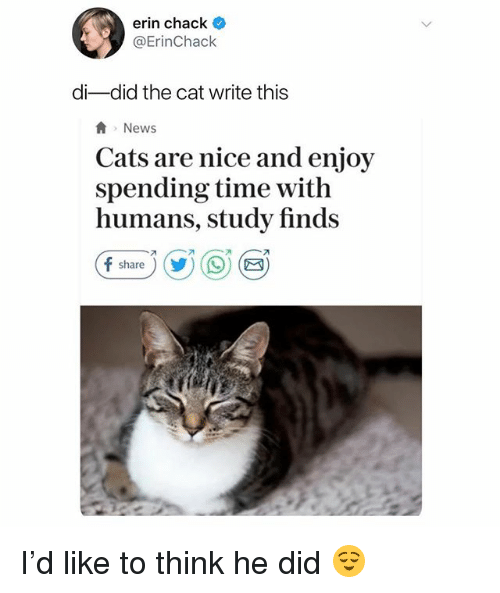 Cats, News, and Time: erin chack  @ErinChack  di-did the cat write this  News  Cats are nice and enjoy  spending time with  humans, study finds  share)) I'd like to think he did 😌