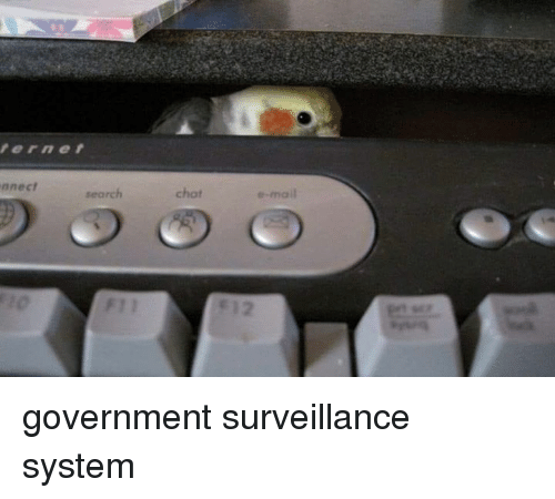 E Mail: ernet  nnect  search  chot  e-mail government surveillance system