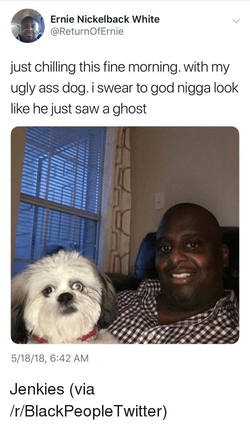 Ass, Blackpeopletwitter, and God: Ernie Nickelback White  @ReturnOfErnie  just chilling this fine morning. with my  ugly ass dog.I swear to god nigga look  like he just saw a ghost  5/18/18, 6:42 AM <p>Jenkies (via /r/BlackPeopleTwitter)</p>