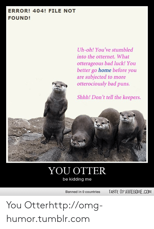 puns: ERROR! 404! FILE NOT  FOUND!  Uh-oh! You've stumbled  into the otternet. What  otterageous bad luck! You  better go home before you  are subjected to more  otterociously bad puns.  Shhh! Don't tell the keepers.  YOU OTTER  be kidding me  TASTE OF AWESOME.COM  Banned in 0 countries You Otterhttp://omg-humor.tumblr.com