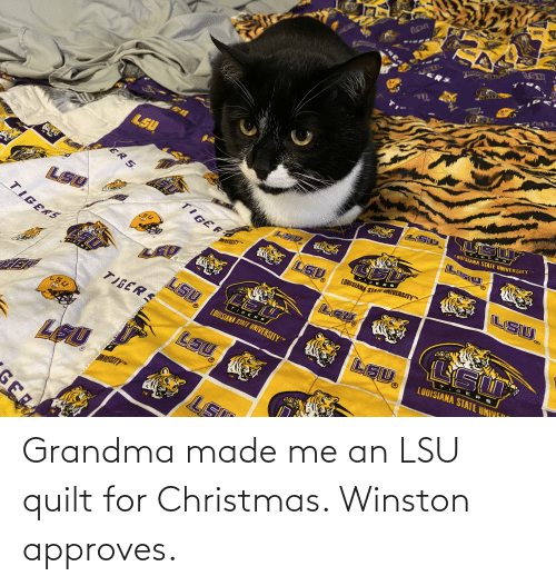 lsu tigers: ERS  LSU  TIG ER  LOUISIANA STATE UNIVERSITY  ER S  LSU  TIGERT  GERS  LSD.  LOUISIANA STATE UNIVERSITY  UNIVERSITY  LEV  LSU.  TIGERS  TM  TIGERS  SERS  TIGERS  LSU  LOUISIANA STATE UNIYEO  LOUISIANA STATE UNIVERSITY  TIGERS  LEU,  LSU  SITYT  GER Grandma made me an LSU quilt for Christmas. Winston approves.