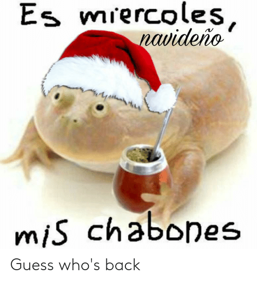 Guess, Back, and Mis: Es miercoles,  navideño  mis chabones Guess who's back