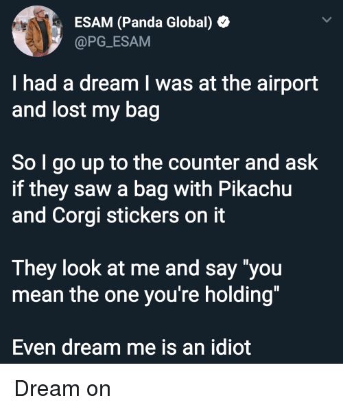 """i had a dream: ESAM (Panda Global)  @PG_ESAM  I had a dream I was at the airport  and lost my bag  So I go up to the counter and ask  if they saw a bag with Pikachu  and Corgi stickers on it  They look at me and say """"you  mean the one you're holding""""  Even dream me is an idiot Dream on"""
