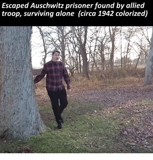 Memes, Prison, and Ally: Escaped Auschwitz prisoner found by allied  troop, surviving alone (circa 1942 colorized)