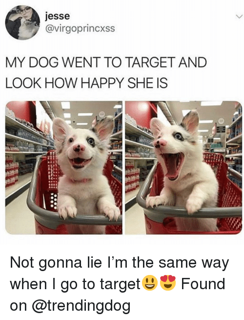 Funny, Target, and Happy: esse  @virgoprincxss  MY DOG WENT TO TARGET AND  LOOK HOW HAPPY SHE IS Not gonna lie I'm the same way when I go to target😃😍 Found on @trendingdog