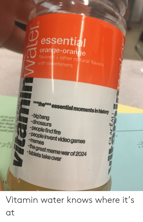 Great Meme War: essential  orange-orange  flavored+other natural flavors  with sweeteners  $**the*essential moments in history  -big bang  -dinosaurs  people find fire  people invent video games  memes  the great meme war of 2024  tablets take over  t to  EAU  GLACEAU Vitamin water knows where it's at