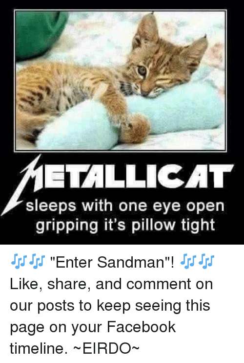 """Entering Sandman: ETALLICAT  sleeps with one eye open  gripping it's pillow tight 🎶🎶 """"Enter Sandman""""! 🎶🎶  Like, share, and comment on our posts to keep seeing this page on your Facebook timeline. ~₩EIRDO~"""