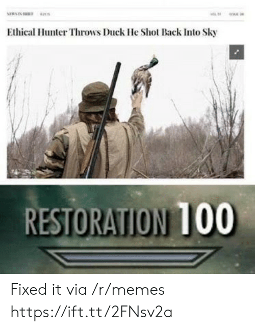 ethical: Ethical Hunter Throws Duck He Shot Back Into Sky  RESTORATION 100 Fixed it via /r/memes https://ift.tt/2FNsv2a