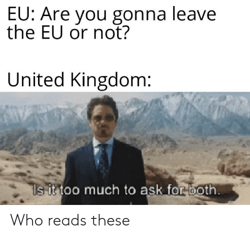 Too Much To Ask: EU: Are you gonna leave  the EU or not?  United Kingdom:  ls it too much to ask for both. Who reads these