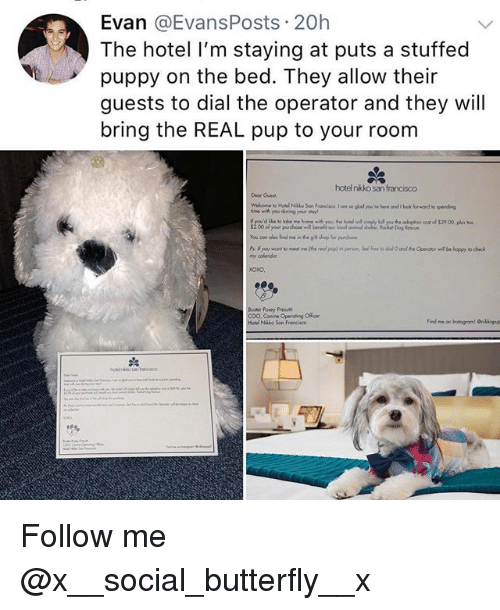 Memes, Pop, and Butterfly: Evan @EvansPosts 20h  The hotel I'm staying at puts a stuffed  puppy on the bed. They allow their  guests to dial the operator and they will  bring the REAL pup to your room  hotel nikko san francisco  Deor Cuest  $2 00 of you purchose il beneht out local onil  You con olso fed me in he gh shop fox purchase  Rocket Dog Resoue  yeu wont so et  colendor  eal pop in peri feol ree o dial O ond the Openstor willbe happy to check  Bster Posey Presuh  COO, Conine Operating Office  Hotel Nilko San Francico  ind me on Ihstogrant Gnkkopş Follow me @x__social_butterfly__x