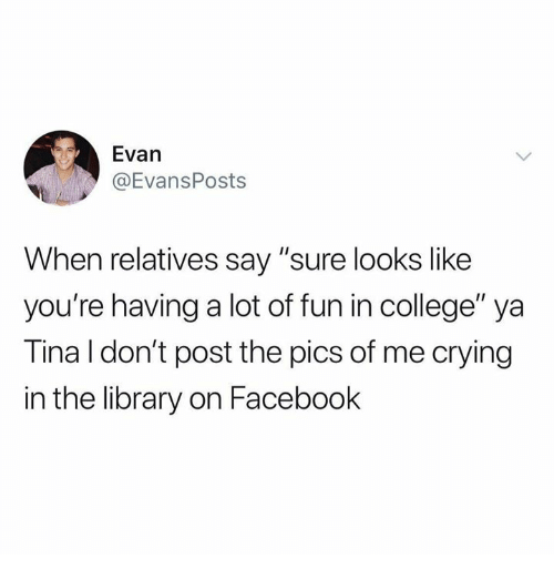 """College, Crying, and Dank: Evan  @EvansPosts  When relatives say """"sure looks like  you're having a lot of fun in college"""" ya  Tina l don't post the pics of me crying  in the library on Facebook"""