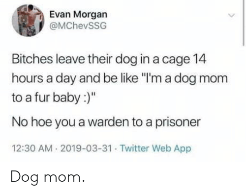 """cage: Evan Morgan  @MChevSSG  Bitches leave their dog in a cage 14  hours a day and be like """"I'm a dog mom  to a fur baby:  No hoe you a warden to a prisoner  12:30 AM 2019-03-31 Twitter Web App Dog mom."""