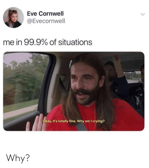 situations: Eve Cornwell  @Evecornwell  me in 99.9% of situations  RAW  Okay, it's totally fine. Why am I crying? Why?
