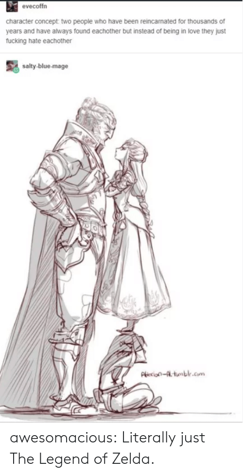 legend of zelda: evecoffrn  character concept two people who have been reincamated for thousands of  years and have always found eachother but instead of being in love they just  fucking hate eachother  salty-blue-mage  Pie-tumblr.com awesomacious:  Literally just The Legend of Zelda.
