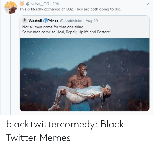 Prince: @evelyn_OG · 19h  This is literally exchange of CO2. They are both going to die.  Westnil Prince @alzaidvictor · Aug 10  Not all men come for that one thing!  Some men come to Heal, Repair, Uplift, and Restore! blacktwittercomedy:  Black Twitter Memes