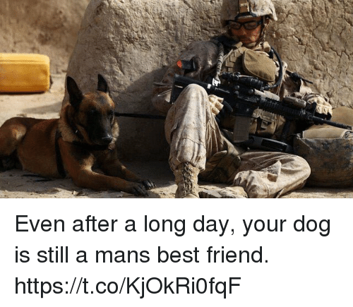 Best Friend, Memes, and Best: Even after a long day, your dog is still a mans best friend. https://t.co/KjOkRi0fqF