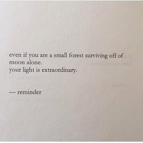 surviving: even if you are a small forest surviving off of  moon alone.  your light is extraordinary.  reminder