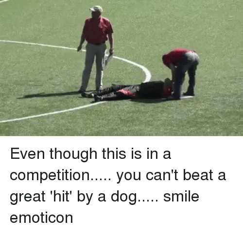 Dog Smile: Even though this is in a competition..... you can't beat a great 'hit' by a dog..... smile emoticon