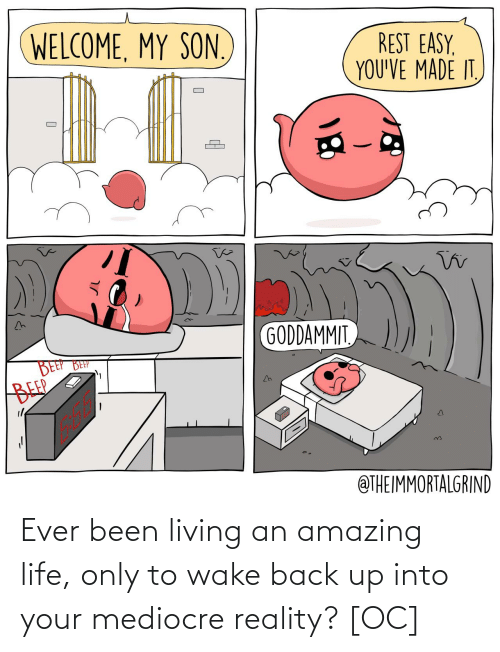 wake: Ever been living an amazing life, only to wake back up into your mediocre reality? [OC]