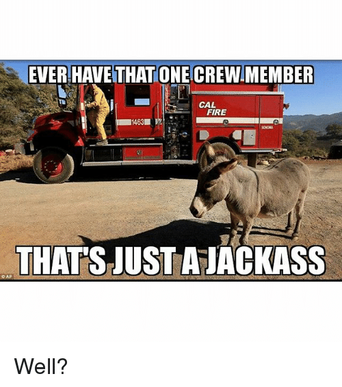 Fire, Firefighter, and Jackass: EVER HAVE THAT ONE CREW MEMBER  CAL  FIRE  THATS JUST A JACKASS  OAP. Well?