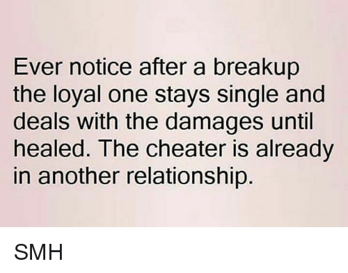 cheaters: Ever notice after a breakup  the loyal one stays single and  deals with the damages until  healed. The cheater is already  in another relationship SMH