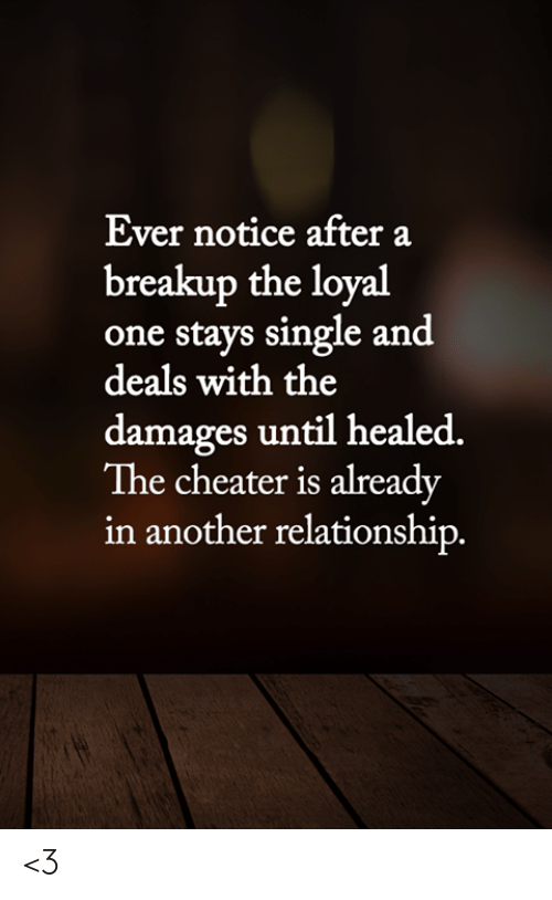 breakup: Ever notice after a  breakup the loyal  one stays single and  deals with the  damages until healed.  The cheater is already  in another relationship. <3