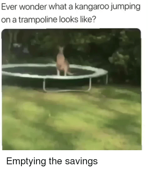 Trampoline: Ever wonder what a kangaroo jumping  on a trampoline looks like? Emptying the savings
