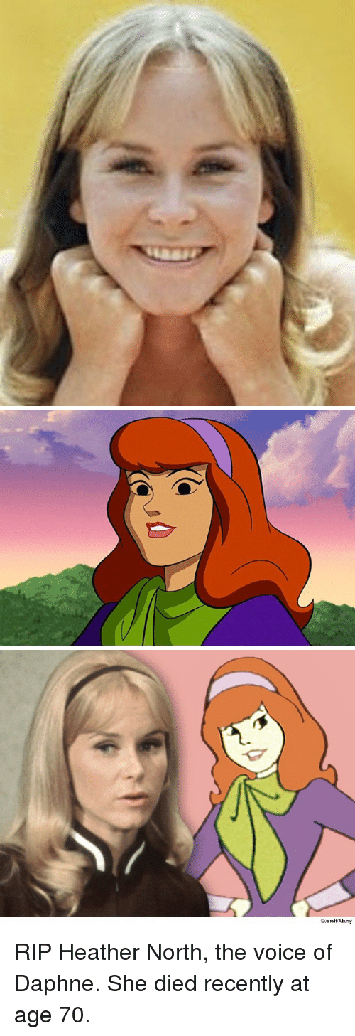 daphne: Everett Alamy <p>RIP Heather North, the voice of Daphne. She died recently at age 70.</p>