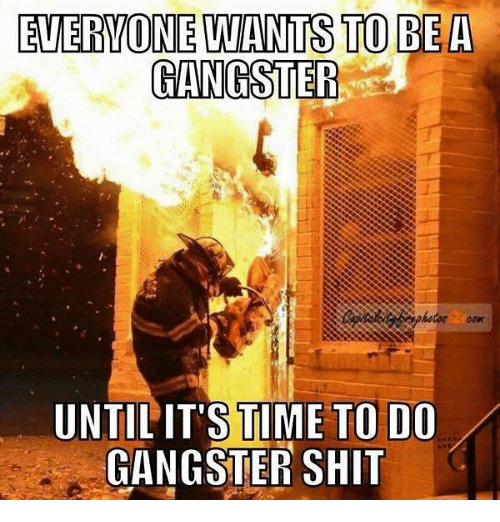Memes, Shit, and Time: EVERVONE LWANTS TO BEA  GANGSTEF  UNTIL'IT'S TIME TO DO  GANGSTER SHIT