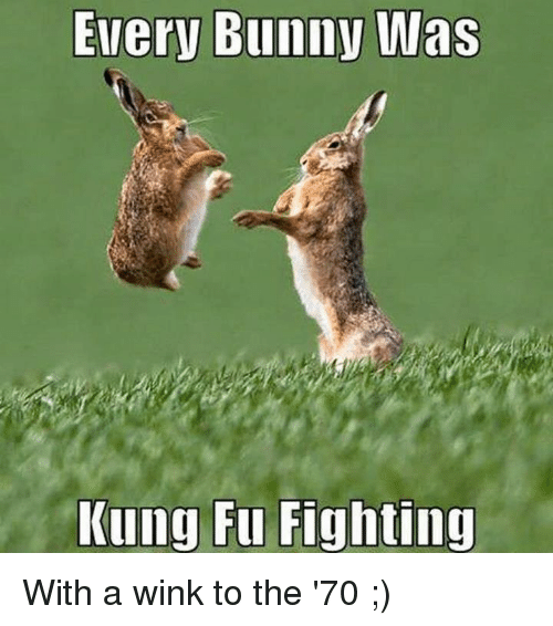 winking: Every Bunny Wlas  Kung Fu Fighting With a wink to the '70 ;)