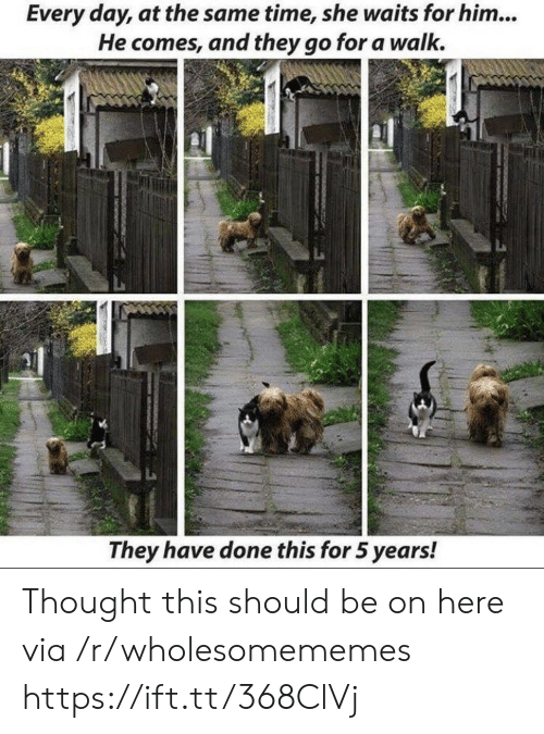 at the same time: Every day, at the same time, she waits for him...  He comes, and they go for a walk.  They have done this for 5 years! Thought this should be on here via /r/wholesomememes https://ift.tt/368ClVj