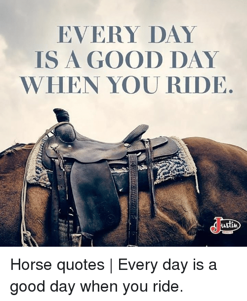Good, Horse, and Quotes: EVERY DAY  IS A GOOD DAY  WHEN YOU RIDE  wlin Horse quotes | Every day is a good day when you ride.