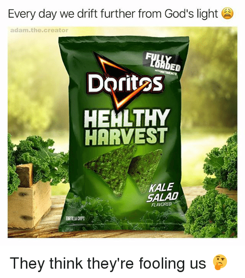 Memes, Kale, and 🤖: Every day we drift further from God's light  adam, the creator  ED  Doritos  HEALTHY  HARVEST  KALE  SALAD  FLAVORED  TORTILLA CHPS They think they're fooling us 🤔