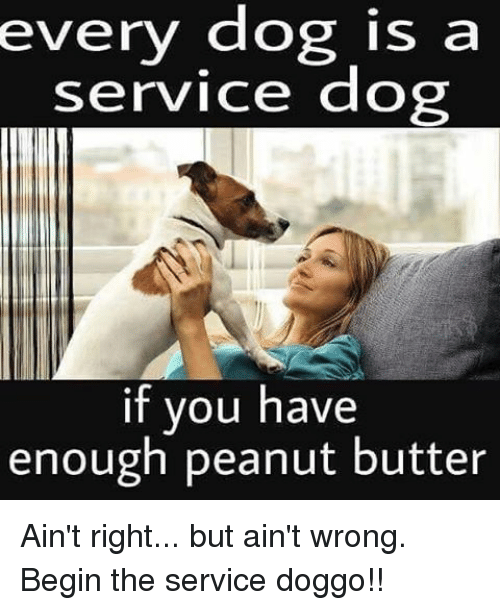 service: every dog is a  service dog  if you have  enough peanut butter Ain't right... but ain't wrong. Begin the service doggo!!