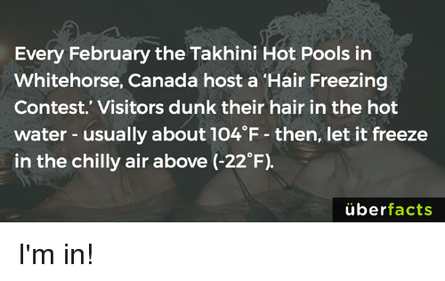 """Chillys: Every February the Takhini Hot Pools in  Whitehorse, Canada host a """"Hair Freezing  Contest. Visitors dunk their hair in the hot  water usually about 1O4 F then, let it freeze  in the chilly air above (-22°F)  uber  facts I'm in!"""