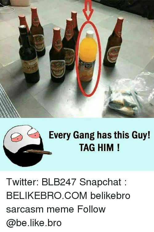 gangs: Every Gang has this Guy!  TAG HIM Twitter: BLB247 Snapchat : BELIKEBRO.COM belikebro sarcasm meme Follow @be.like.bro