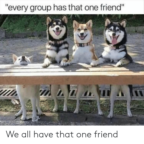 """That One Friend: """"every group has that one friend"""" We all have that one friend"""