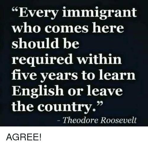 "theodore roosevelt: ""Every immigrant  who comes here  should be  required within  five years to learın  English or leave  the country.""  Theodore Roosevelt AGREE!"
