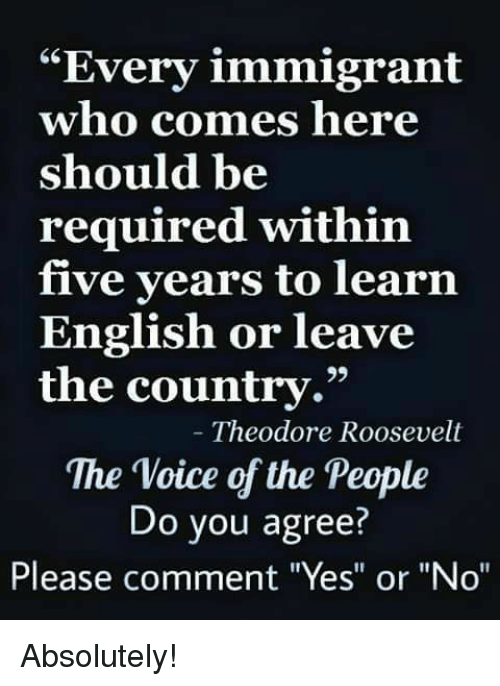 "theodore roosevelt: ""Every immigrant  who comes here  should be  required within  five years to learn  English or leave  the country.""  29  Theodore Roosevelt  The Voice of the People  Do you agree?  Please comment ""Yes"" or ""No"" Absolutely!"