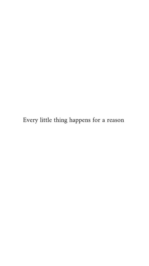 every little thing: Every little thing happens for a reason
