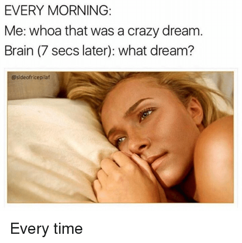 Crazy, Dank, and Brain: EVERY MORNING:  Me: whoa that was a crazy dream  Brain (7 secs later): what dream?  @sideofricepilaf Every time