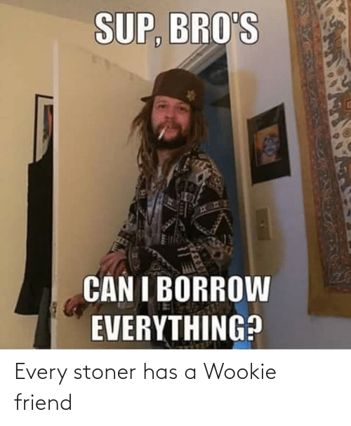 stoner: Every stoner has a Wookie friend