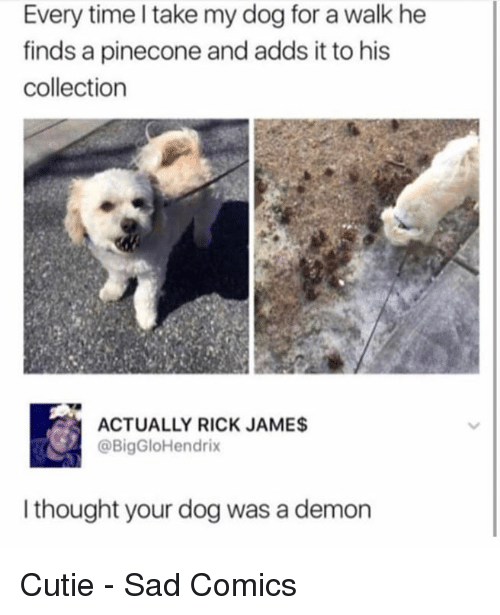 Dank, Time, and Sad: Every time I take my dog for a walk he  finds a pinecone and adds it to his  collection  ACTUALLY RICK JAMES  @BigGloHendrix  I thought your dog was a demon Cutie - Sad Comics