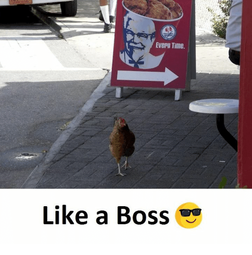 Time, Boss, and Like a Boss: Every Time.  Like a Boss