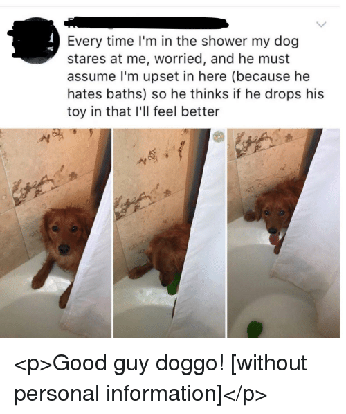 Shower, Good, and Information: Every time l'm in the shower my dog  stares at me, worried, and he must  assume l'm upset in here (because he  hates baths) so he thinks if he drops his  toy in that I'll feel better <p>Good guy doggo! [without personal information]</p>