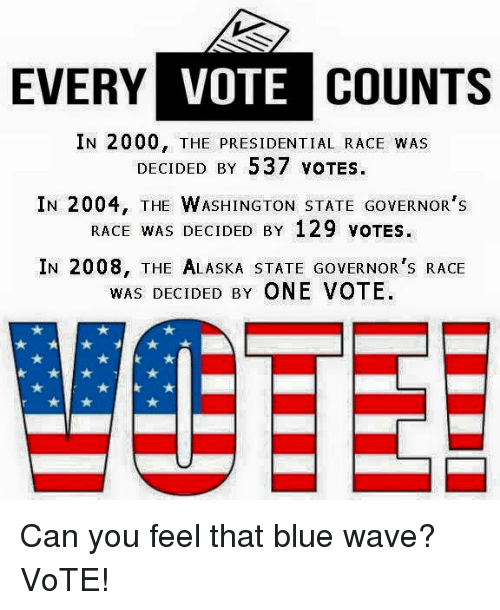 blue waves: EVERY VOTE  COUNTS  IN 2000, THE PRESIDENTIAL RACE WAS  DECIDED BY 537 VOTES.  IN 2004, THE WASHINGTON STATE GovERNOR's  RACE WAS DECIDED BY 129 voTES.  IN 2008, THE ALASKA STATE GovERNOR's RACE  WAS DECIDED BY ONE VOTE. Can you feel that blue wave? VoTE!