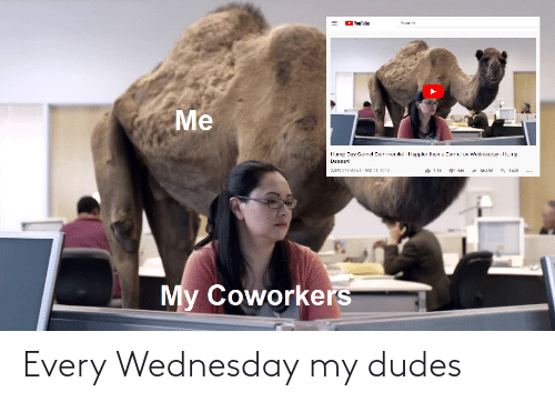 Wednesday: Every Wednesday my dudes