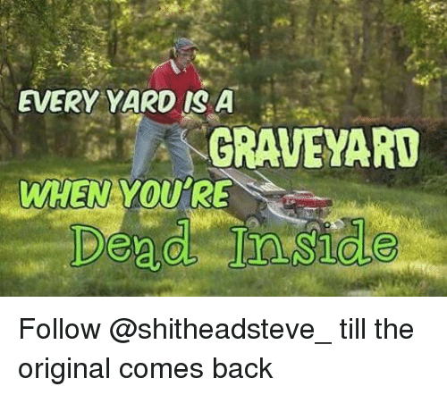 Memes, 🤖, and The Originals: EVERY YARD IS A  GRAVEYARD  WHEN YOU'RE Follow @shitheadsteve_ till the original comes back
