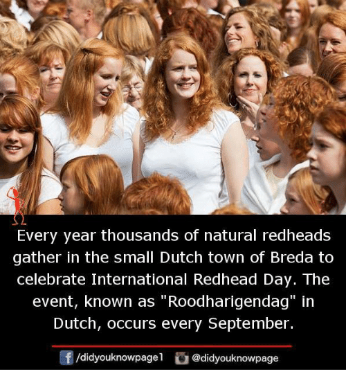 """Memes, Dutch Language, and International: Every year thousands of natural redheads  gather in the small Dutch town of Breda to  celebrate International Redhead Day. The  event, known as """"Roodharigendag"""" in  Dutch, occurs every September.  /didyouknowpagel @didyouknowpage"""